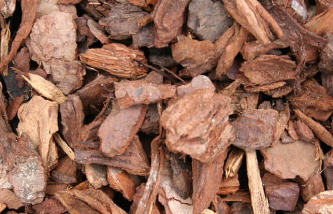 Bark products